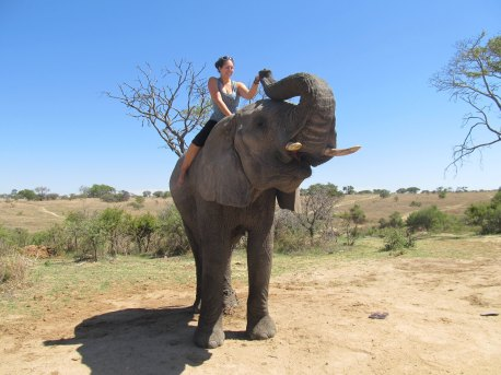A Once in a Life Time Experience in Botswana this year.